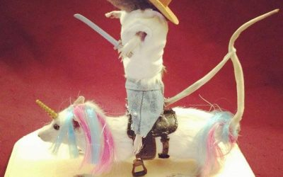 Cowboy riding a unicorn!